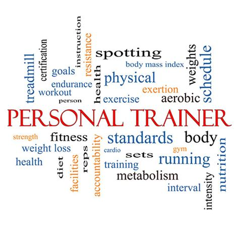 best personal trainer the best personal trainer certification course