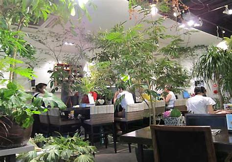 Enchanting Vertical Garden Is Really A Flora Filled Bar In Garden Flower Shop
