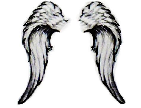 angel wings art clipart best