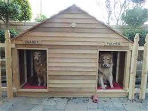 how to make a heated dog house dog friendly backyard ideas
