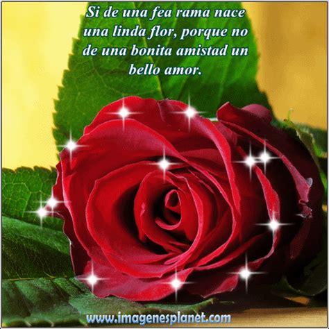imagenes de amor y amistad flores im 225 genes de rosas con frases hermosas de amor con