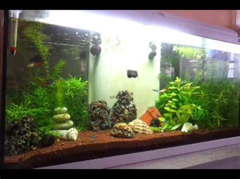 aquarium 100 l aquarium 100 l