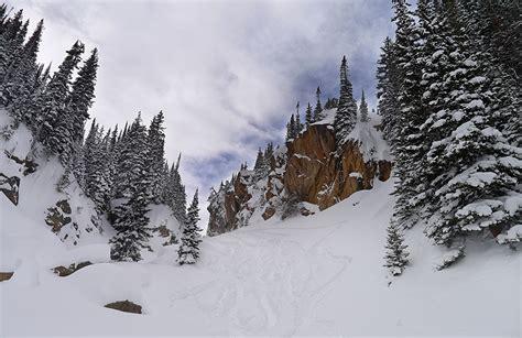 bilder nadelbäume pin bilder winter schnee b 164 ume wolken hintergrundbilder