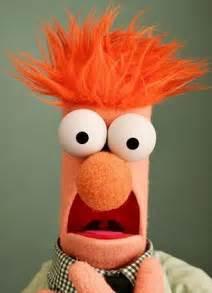 stuart hogg beaker muppet daily mail