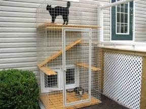 outdoor cat enclosure cat patio catio caring for