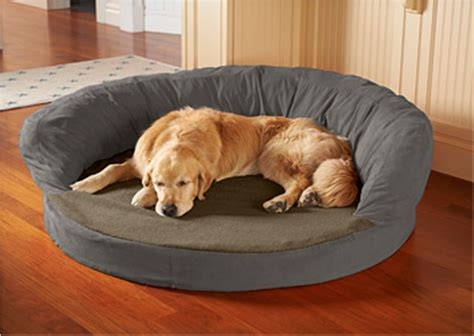 extra large dog beds kong dog beds petsmart bolster dog bed grey medium extra