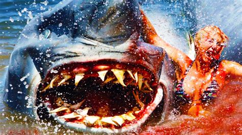 best shark attack the top 5 shark attacks of all time