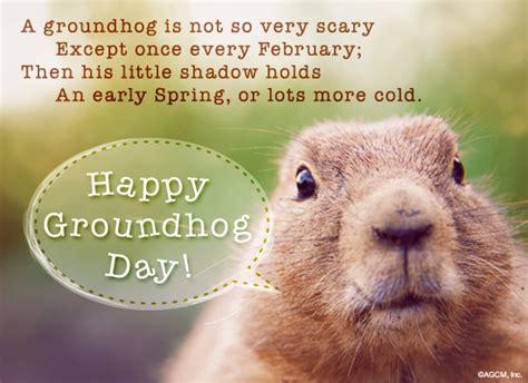 groundhog day theory a groundhog s not so scary groundhog day ecard