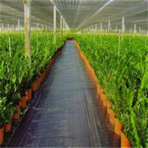 Landscape Fabric Thickness China 4 Uv Treated Agriculture Non Woven