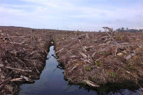 Masyarakat Dan Hukum Adat Batak Toba masyarakat adat sekitar danau toba tuntut tpl kembalikan