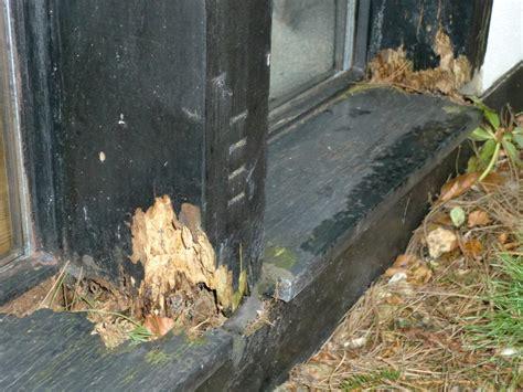 Morsches Holz Ausbessern by Morsches Holz Reparieren W 228 Rmed 228 Mmung Der W 228 Nde Malerei
