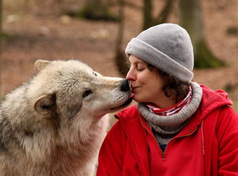 dogs and humans human cooperation is based on social skills of wolves