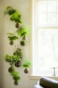 zimmerpflanzen schlafzimmer best 25 pflanzen zimmer ideas only on zimmerpflanze wohnung pflanzen and