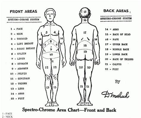 tattoo locations chart tattoo pain chart