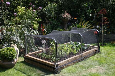 vegetable garden netting frame hochbeete im garten bauen 19 ideen aus verschiedenen