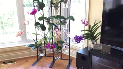ikea orchid stand youtube