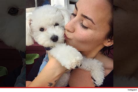Demi Lovatos Dogs Tragic Death New Details About What | demi lovatos dogs tragic death new details about what
