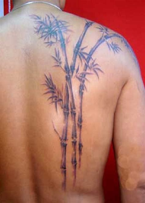 bamboo tattoos bamboo tree tattoos and designs page 8