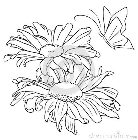 Outline Of Flowers And Butterflies by Outline Flower For Painting Stock Photo Image 51421115