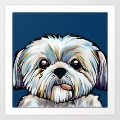 sugar and spice shih tzu sugar vs spice shih tzu zazzle store shih tzu spices shih tzu