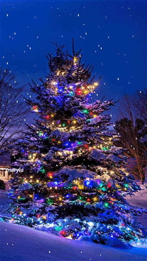 cool christmas gifs      holiday spirit gifs blue christmas beautiful