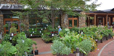 Garten Pflanzen Shop by Jefferson Center For Historic Plants