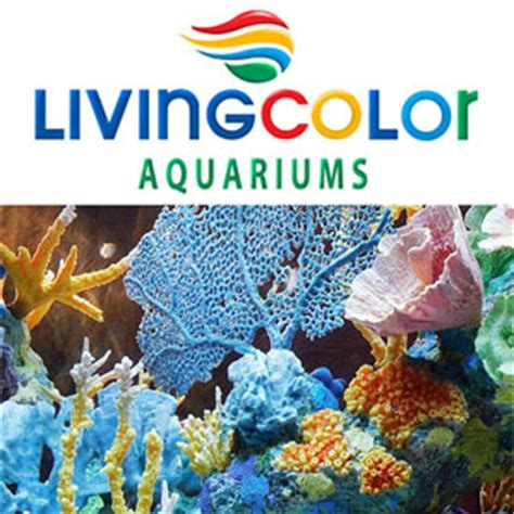 in living color plattsburgh ny albany plattsburgh burlington vt outdoor water gardens