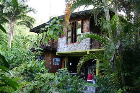 Dominica Cottages by Cocoa Cottage 2 Picture Of Cocoa Cottages Roseau