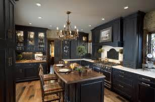 Kitchen Ideas With Black Cabinets by Elegant Black Kitchen Design Kitchen Cabinets