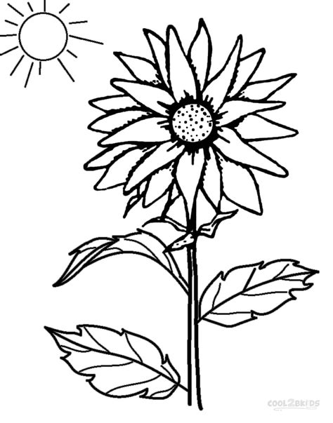 printable sunflower images printable sunflower coloring pages for kids cool2bkids