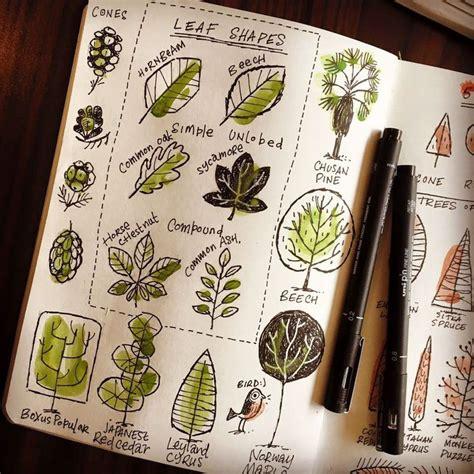 sketchbook nature best 25 sketch journal ideas on sketchbooks
