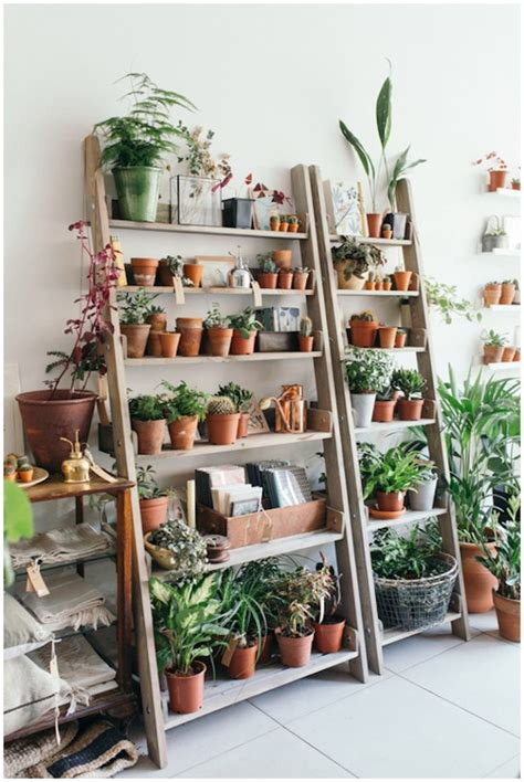 Ladder Shelf For Plants by Plant Shelf Ideas For Adding Nature Atmosphere In Your