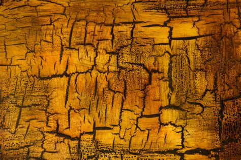 brown cracked painted wall texture textures for cracked grunge texture yellow gold paint chip wall stained