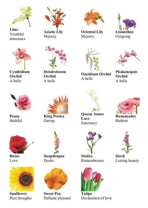 Types Of Flowers And Their Meanings by Language Of Flower Different Types Of Flowers