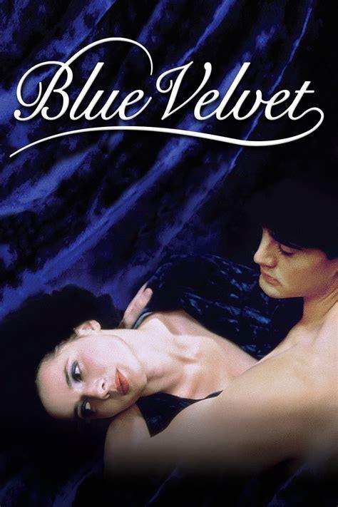 film blue velvet blue velvet bravemovies com watch movies online