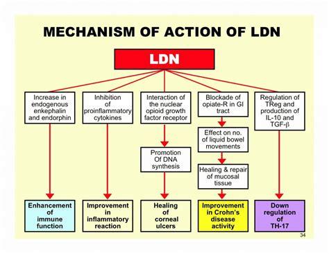 naltrexone challenge low dose naltrexone ldn and hashimoto s hashimotos healing