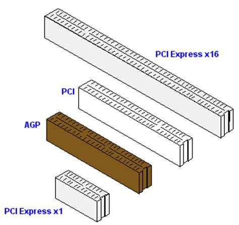 diferencia entre sketchbook pro y express 191 cu 225 l es la diferencia entre agp y pci