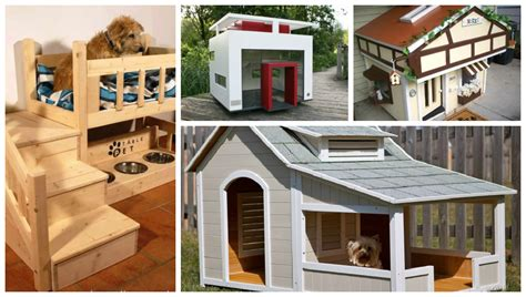 fancy dog houses 19 totally sweet and fancy dog houses top inspirations