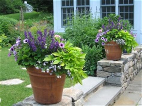 container gardening amy ziffer