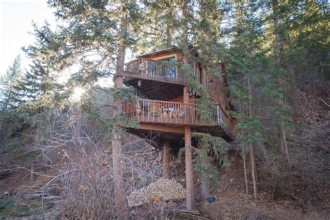 tree houses for rent colorado treehouses to rent on airbnb denver7