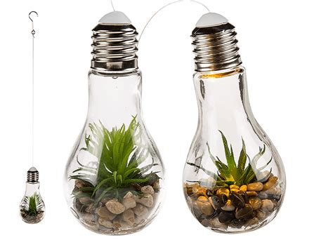 Le Mehrere Glühbirnen by Deko Sukkulenten In Glas Gl 252 Hbirne Mit Wei 223 Er Led Inkl