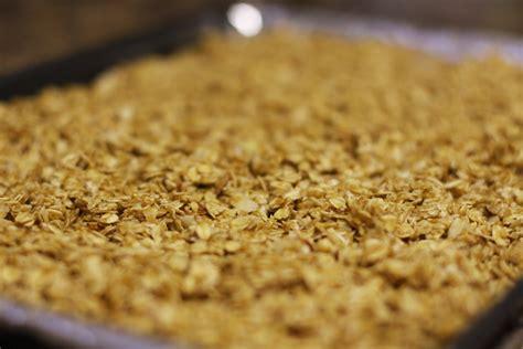 will birds eat sesame seeds