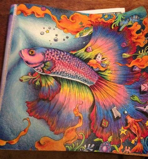 crayons colored pencils coloring book five books 165 best images about coloring on gel pens