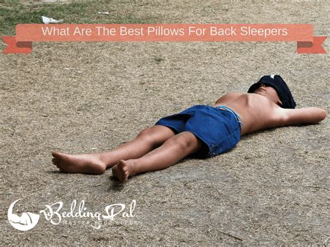 Best Pillow For Back Sleeper by Best Pillows For Back Sleepers Dc Labs Ultra Slim Sleeper