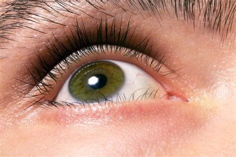 what is hazel eye color hazel learn why with greenish eye color are