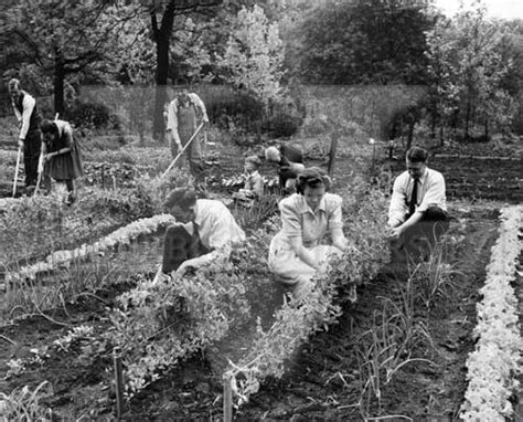 Victory Garden Ww2 by Special Collections Exhibits