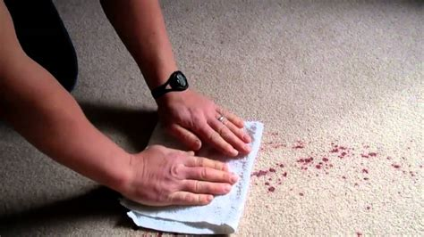 upholstery cleaning victoria how to clean red wine and most spills out of carpet