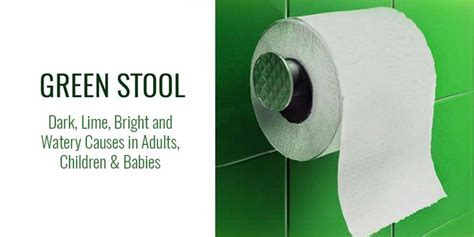 Why Is Stool Bright Green by Bright Lime Green Stool Diarrhea Causes In Adults Babies And How To Stop