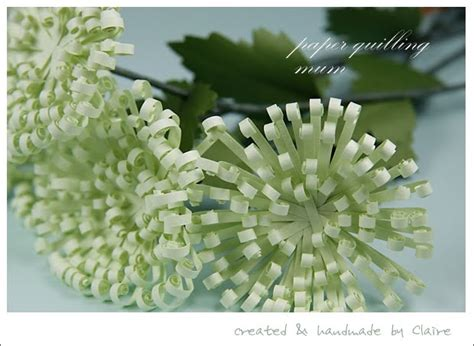 quilling chrysanthemum tutorial 385 best images about quilling on pinterest snowflakes