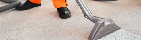 couch cleaning gold coast carpet upholstery cleaning gold coast professional
